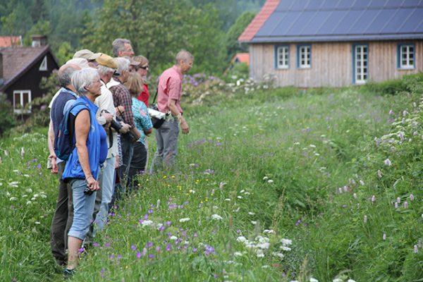OVH Exkursionsteilnehmer Foto G. Grein