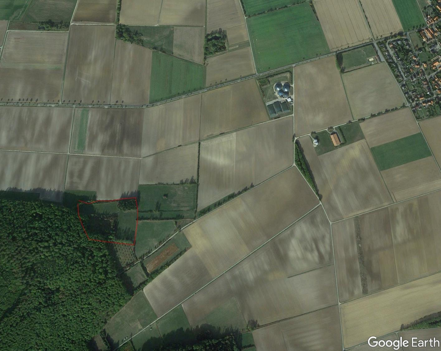 Ein Bild, das grün, Gras, Gebäude, Ebene enthält. Automatisch generierte Beschreibung