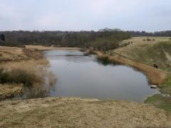 Giesener Teich, April
