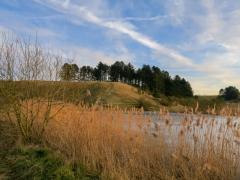 Giesener Teich, Februar 2