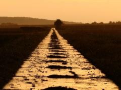 Südlicher Feldweg bei Hüddesum